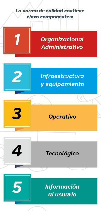 5 componentes