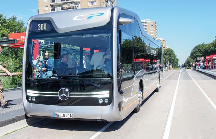 bus MB
