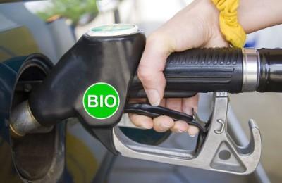 biocombustible1