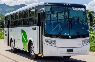 Señalan largas esperas por transporte en Puerto Vallarta