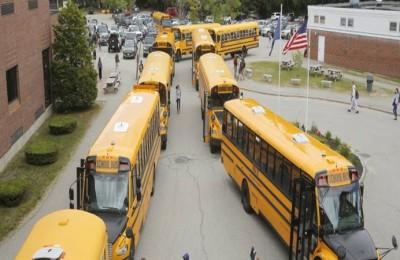 buses importados